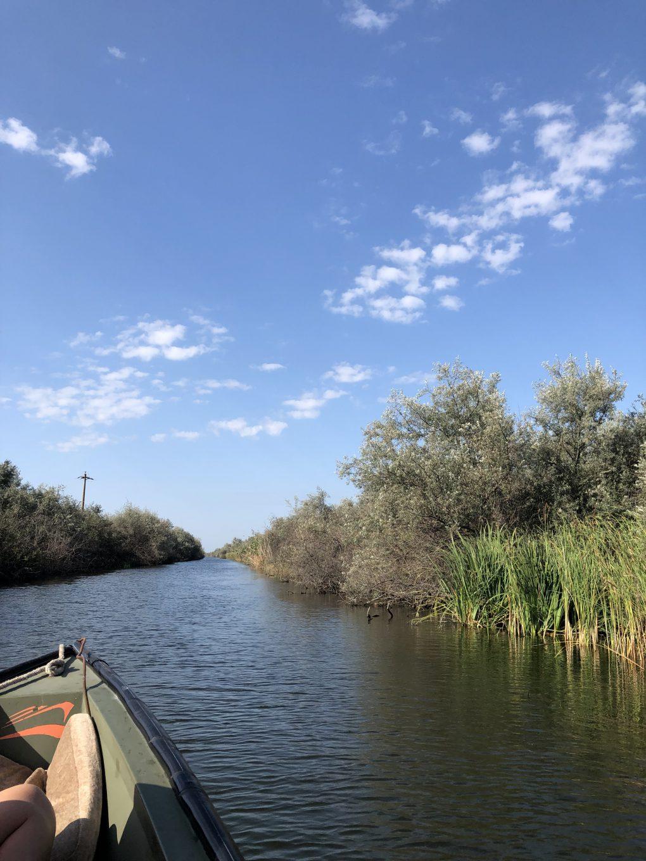 Kawałek Delty Dunaju na talerzu – Poftă bună